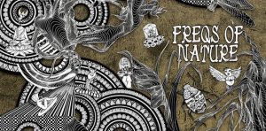 Flyer - Freqs of Nature 2017